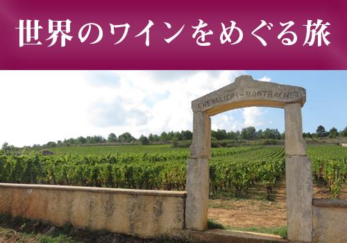 世界のワインをめぐる旅